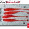 Redbug Molinella 85