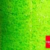 Зелёный неон 0,4 мм