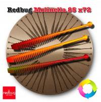 Redbug Molinella 85 x72