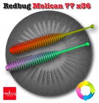 Redbug Molican 77 x36