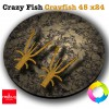 Crazy Fish Crayfish 45 x24 (реплика)