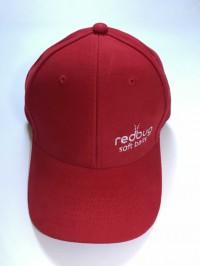 """Фирменная кепка """"Redbug type1"""""""