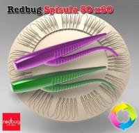 Redbug Spisula 50 x60